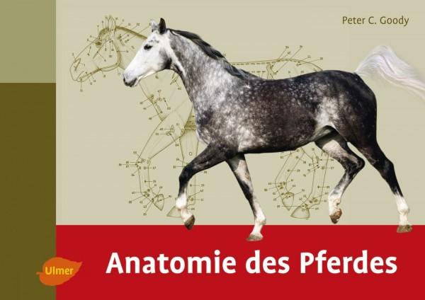 Anatomie des Pferdes (2. Auflage)