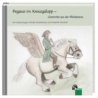 Pegasus im Kreuzgalopp